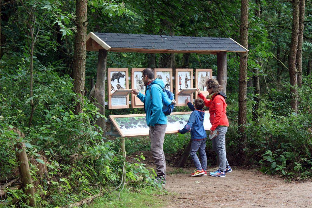 Der neue Naturentdeckerpfad im Bärenwald Müritz (Foto: Bärenwald Müritz)